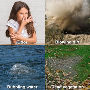 Gas leak indicators odor, blowing dirt, bubbling water and dead vegetation