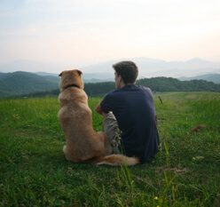 Young man sitting with his dog outside looking at the fields and hillside
