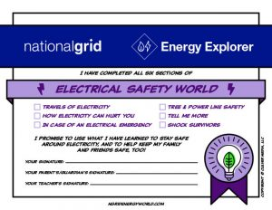 National Grid Electrical Safety World certificate